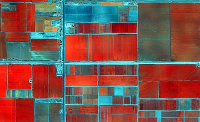fields-obregon