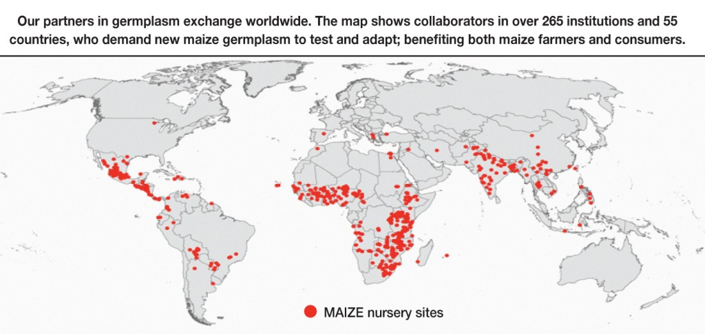 Map describing MAIZE CRP nursery sites around the world