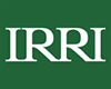 IRRI Logo