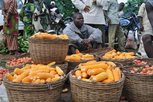 Selling maize cobs in a market