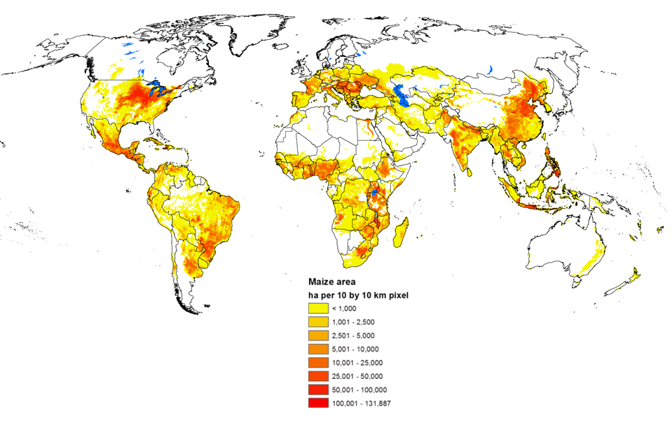 Maize and wheat global production areas v3 2005_009
